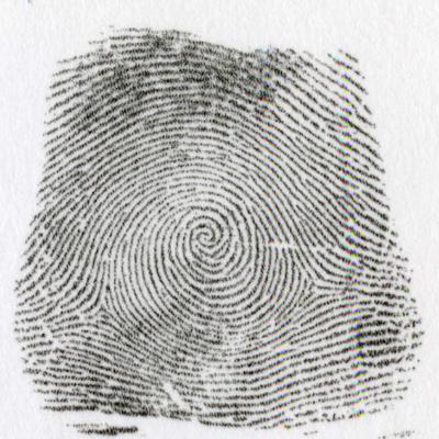 左うず巻環状紋:左うず巻環状紋とは、指紋線の全体が左巻に流れている指紋を言います。 �