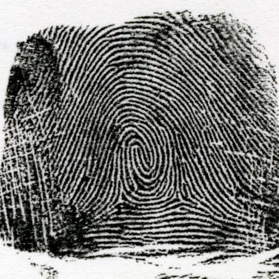 左咬合渦状紋とは、右からの流れと左のからの流れが中心で咬み合わせるような模様を言います