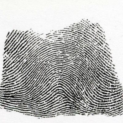 左偏流弓状紋とは、中心より左側が広く、右側が閉塞的な流れの弓状紋を言います