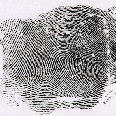 右一連分離紋とは、左の指紋と逆の模様を言います