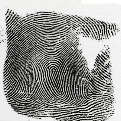純環状紋:純環状紋とは、中心の線が円になっている指紋を言います