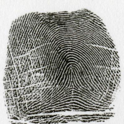 有中心弓状紋とは、指紋の中心に三角州がある紋様を言います