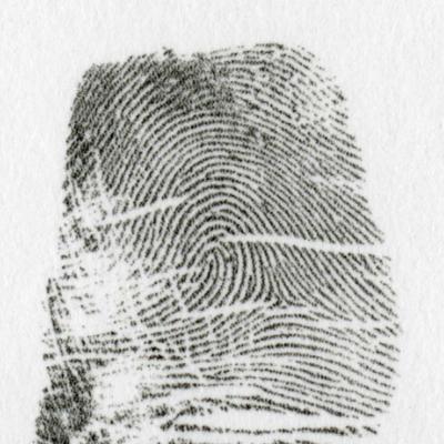 左流閉塞蹄状紋とは、馬蹄形が閉塞している模様を言います。これも乙種と甲種があります