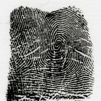 右うず巻環状紋とは、指紋線の全体が右巻に流れている指紋を言います�